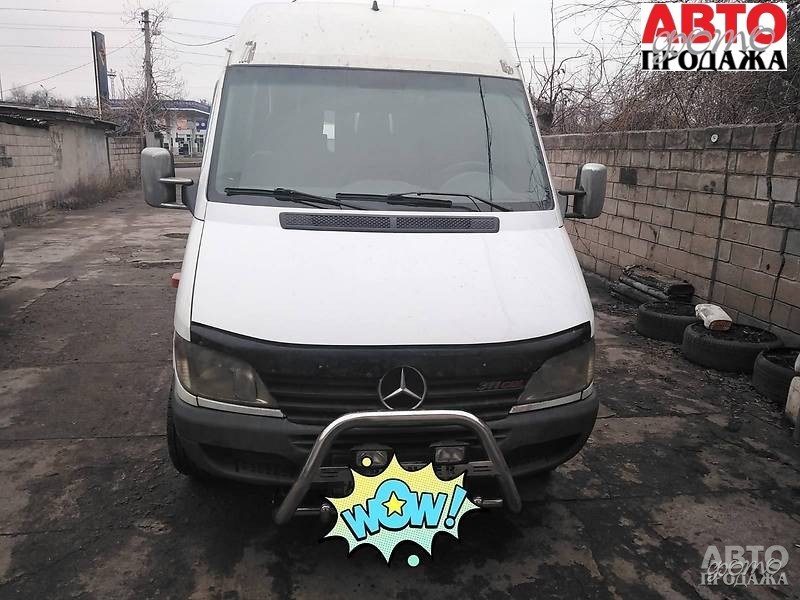 Mercedes-Benz Sprinter 313 пасс.  2001 г.в
