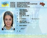 Начинающим водителям будут выдавать права на 2 года