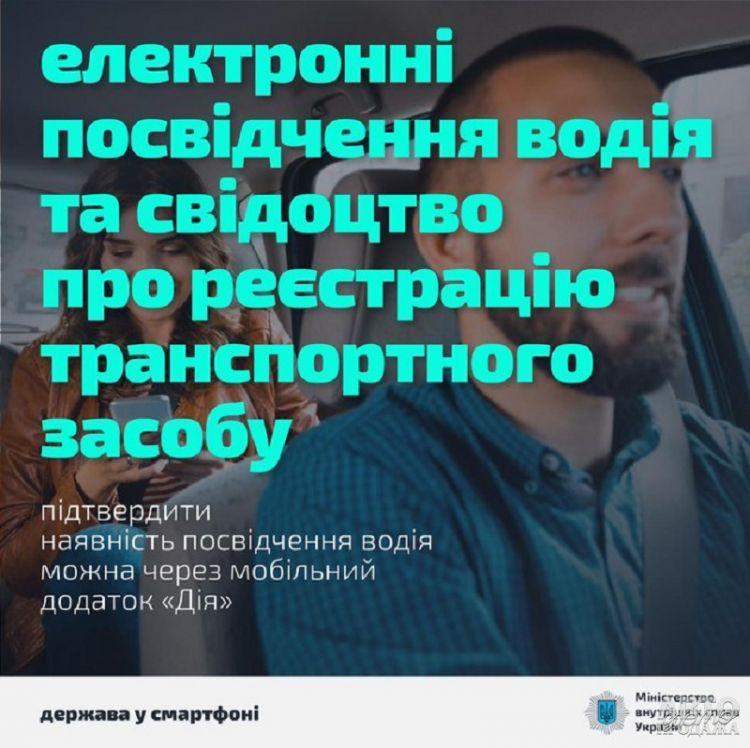 В Украине появятся электронные водительские права и техпаспорт