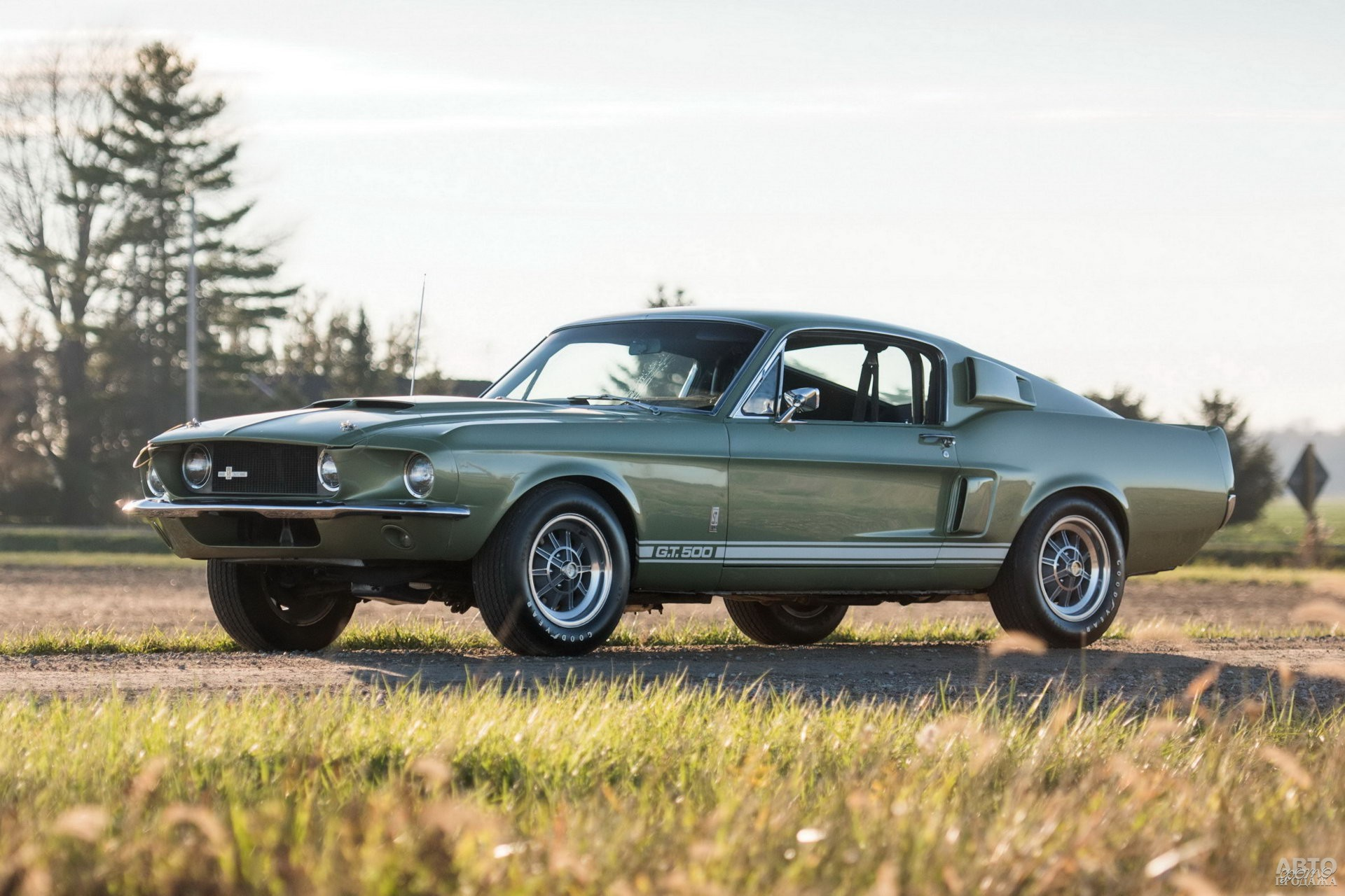 Shelby GT500 1967 года