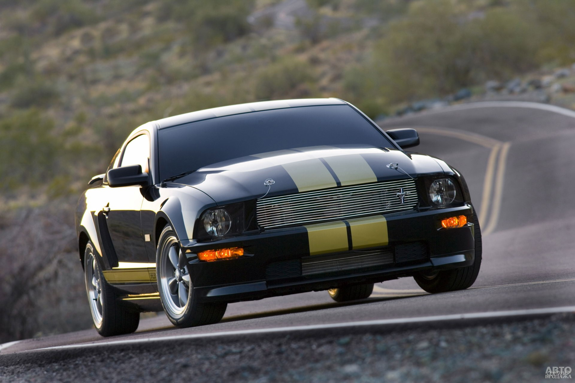 Shelby GT-H 2005 года
