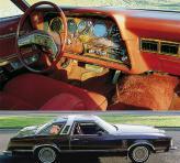 Ford Thunderbird Town Landau (1979)