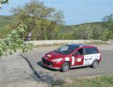 В гонке принимали участие экипажи различных марок автомобилей