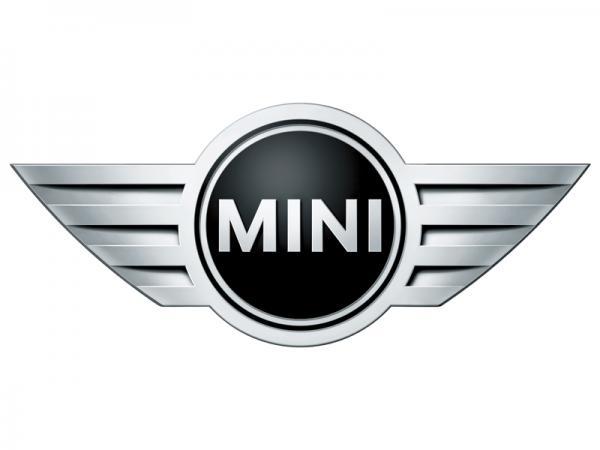 Mini, пролежавший 30 лет под землей, продадут на аукционе