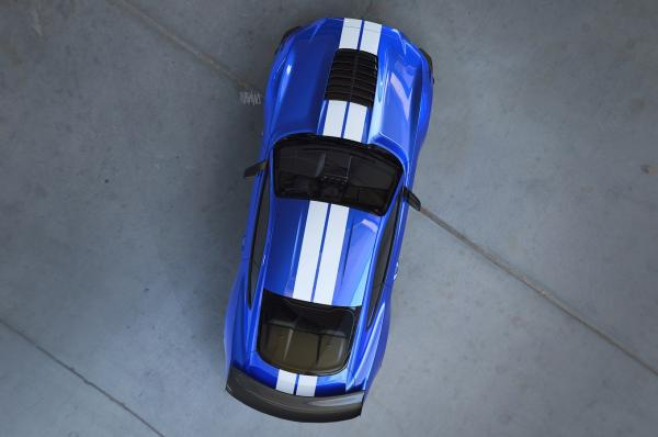 Первое фото Ford Mustang Shelby GT500